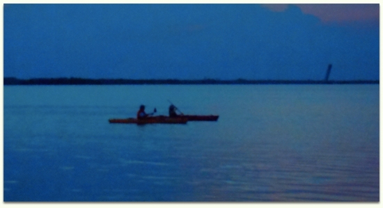 Bioluminescence kayaking tour minutes from Orlando and Walt Disney World.
