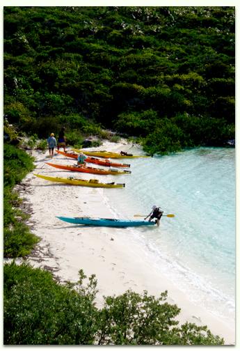 Caribbean paradise sea kayaking. Kayaking in the Bahamas.