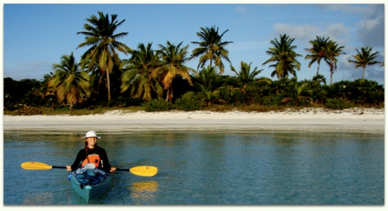 We specialize in warm water tropical kayaking tours. Enjoy the Caribbean with Adventures in Florida.
