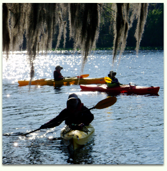 Paddle your kayak on Florida's rivers, springs, and swamps with Adventures in Florida.